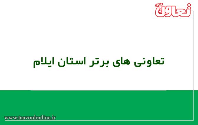 تعاونی برتر استان ایلام