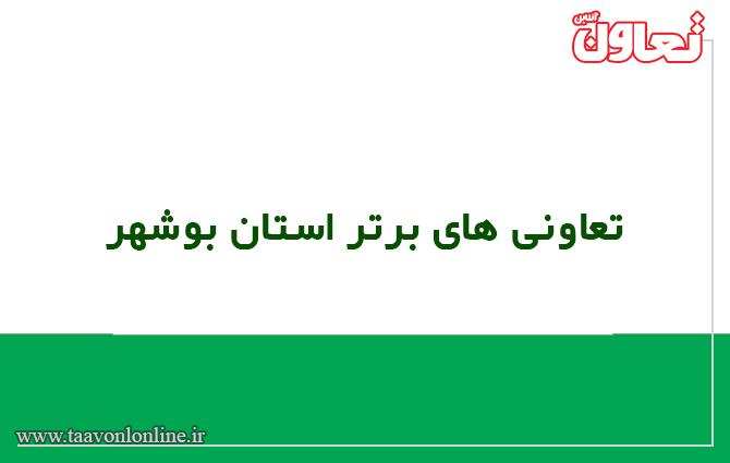 تعاونی برتر استان بوشهر