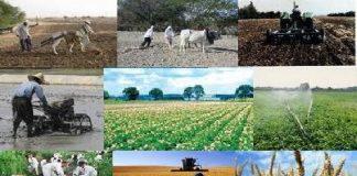 تعاونی ها باعث توسعه روستایی می شود