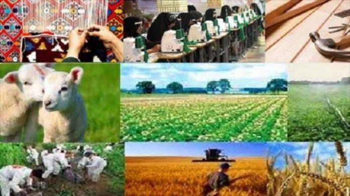برنامه های اشتغال استان مرکزی در سال جاری