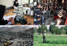 فرصتهای شغلی استان زنجان چقدر بود؟